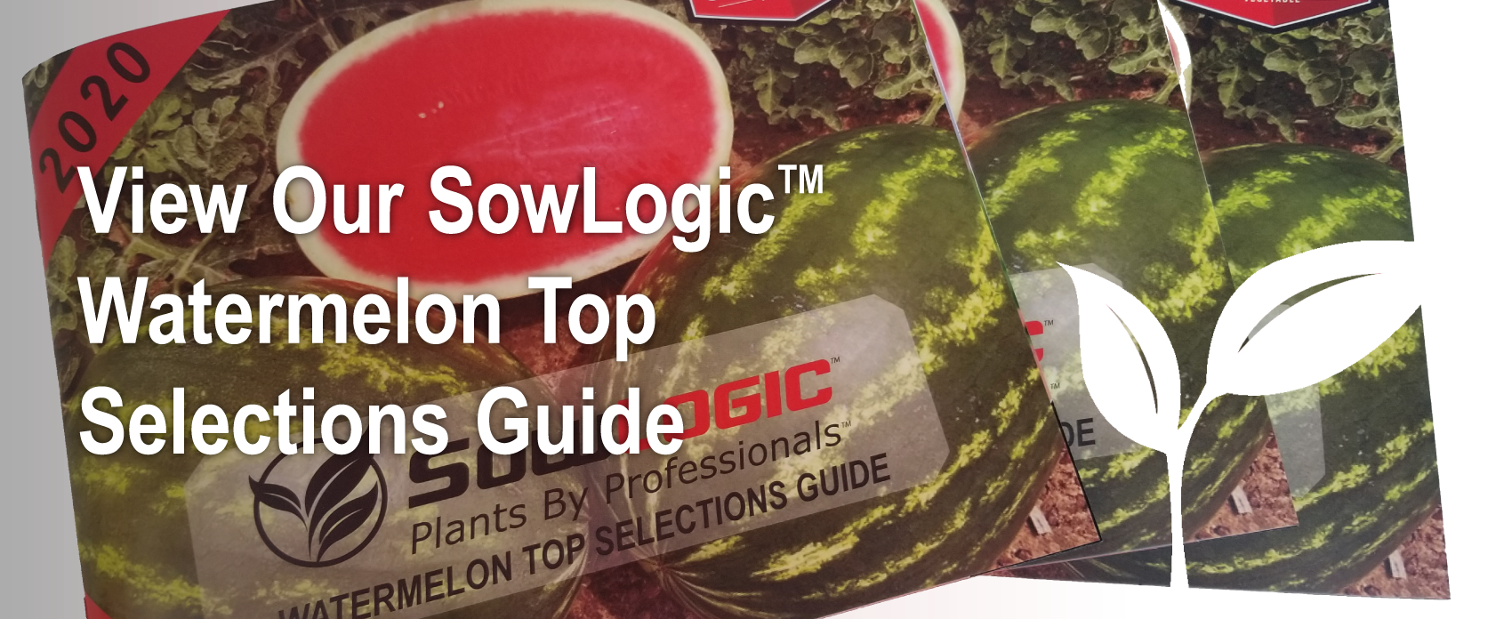Printed copies of Seedway's SowLogic product catalog